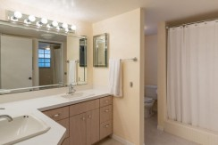1624-Sheldon-Drive-Clearwater-large-021-Master-Bathroom-1499x1000-72dpi-770x386