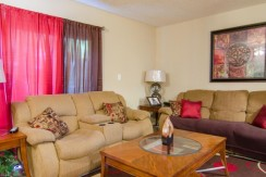 221-46th-Ave-S-Saint-large-003-Living-Room-1500x994-72dpi-770x386